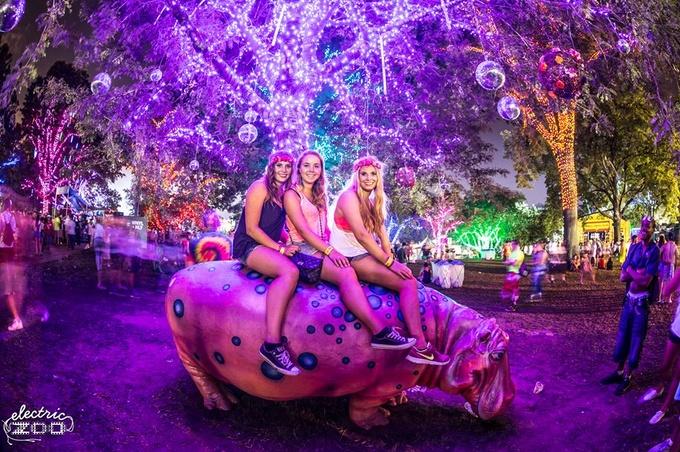 動物園がテーマのファンシーでファンキーなフェス、Electric Zoo(エレクトリック・ズー)とは!