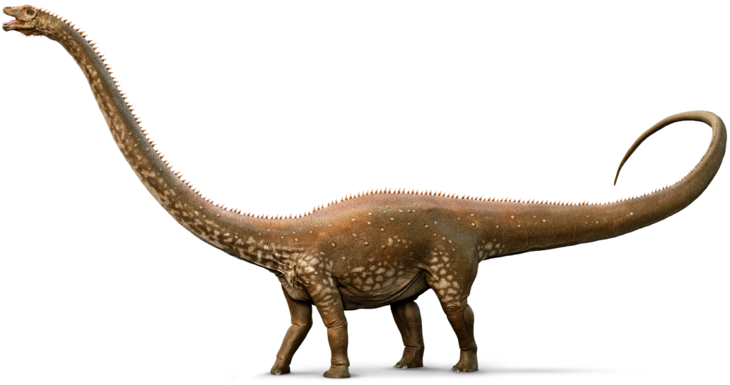 diplodocus_whole_amzt6e