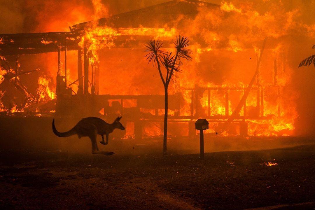 オーストラリアで続く大規模な森林火災による被害者救済のために多くのDJたちが寄付!